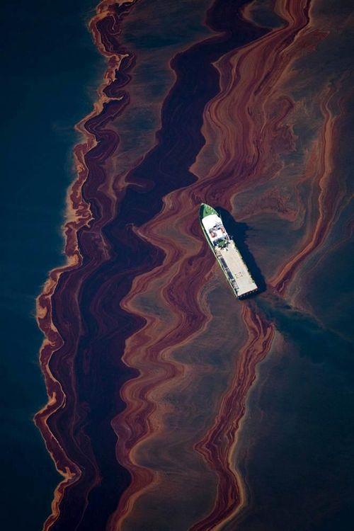 BP oil spill photo
